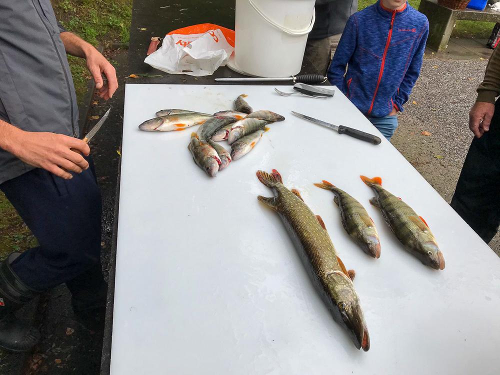 Vereinsfischen-05